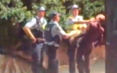 Screen shot of the video footage of alleged police bashing outside Brisbane's The Beat nightclub