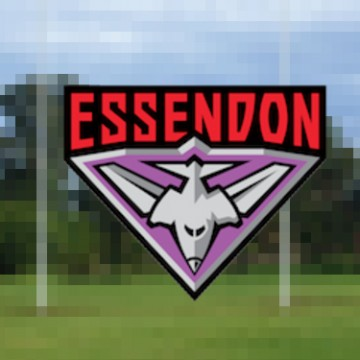Purple Bombers Essondon