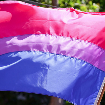 Bisexual pride flag (Source: Wikimedia Commons)