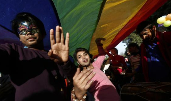 India Gay Pride 2014 New Delhi