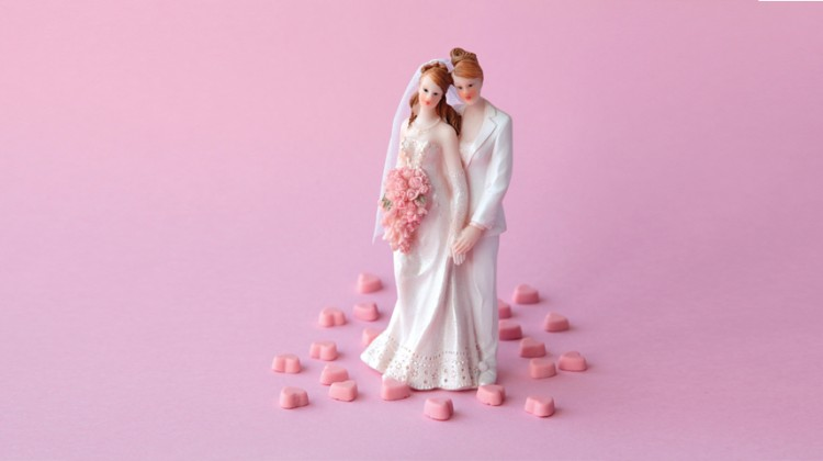 lesbian wedding marriage gay couple brides pink same-sex