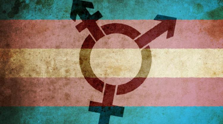 trans flag symbol