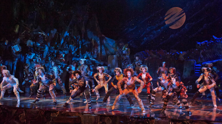 The cast of the Cats musical in Australia. (Supplied photo)