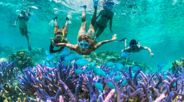 New Caledonia holiday water snorkel dive coral reef